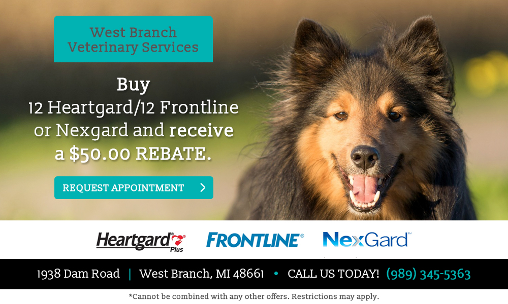 west-branch-vet-services-1
