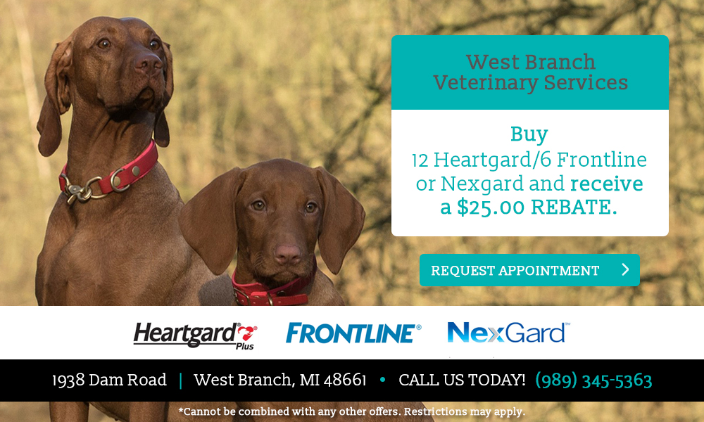 west-branch-vet-services-2